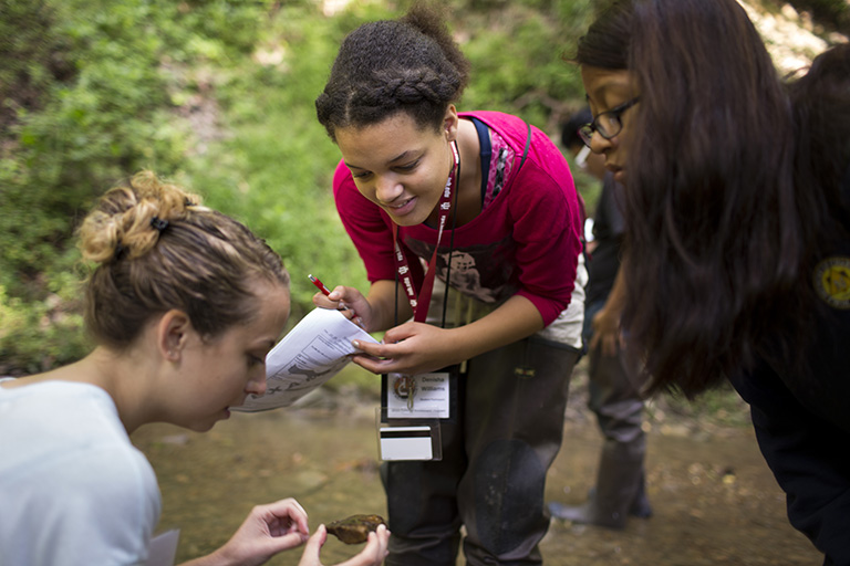 Students examine an object found in nature.